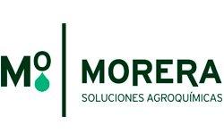 Morera