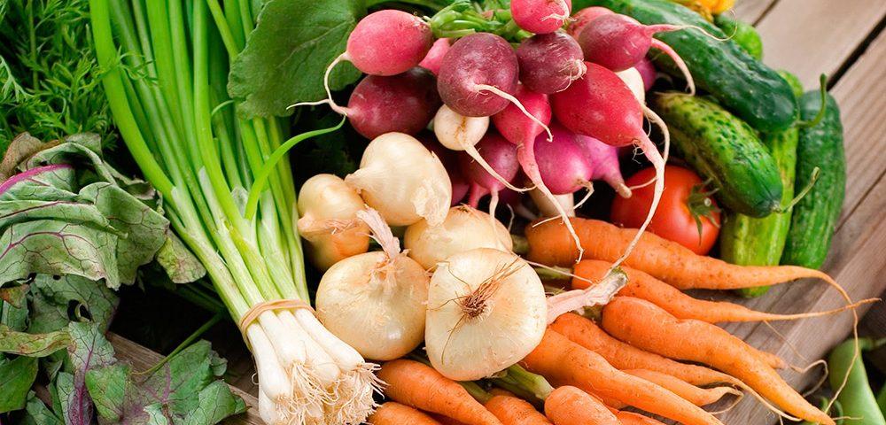 Estimulantes vegetales