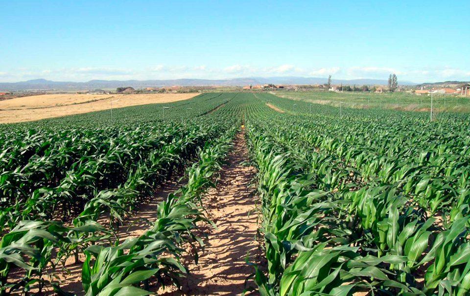 Fertilizantes Aefa