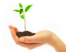 Agricultura productiva, rentable pero necesariamente sostenible