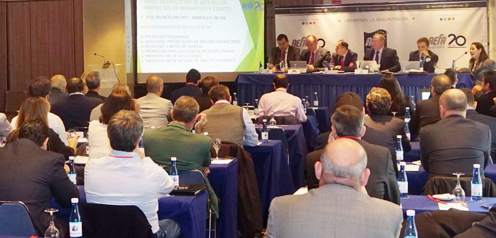 Asamblea de AEFA