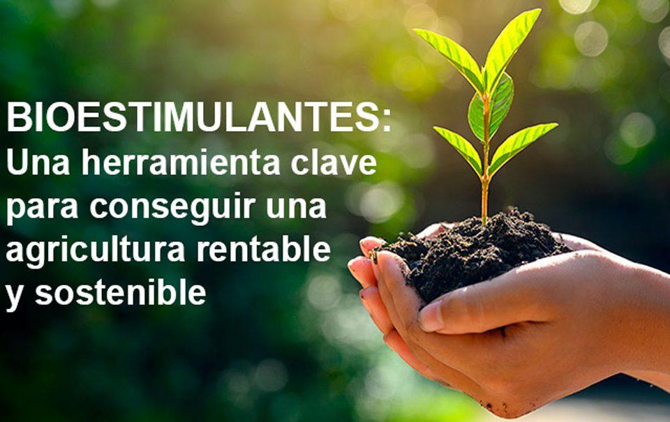 Los bioestimulantes como fertilización eficiente y sostenible