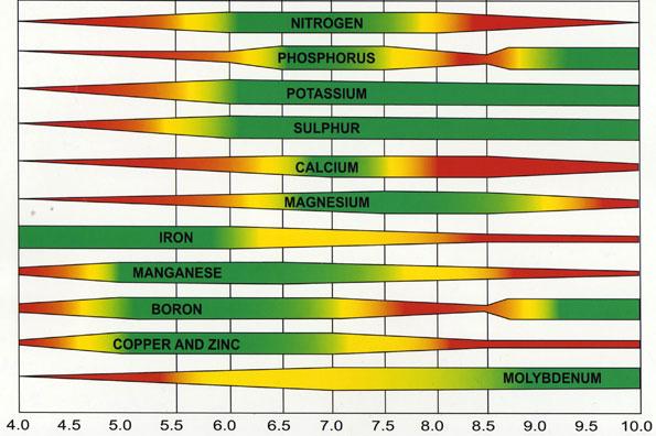 Clasificación del pH