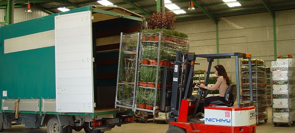 ACPO, Asociación de Comercializadores de Planta Ornamental
