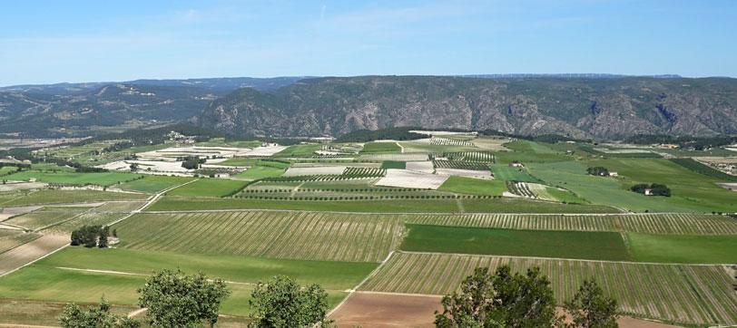 Agricultura ecológica e industria de fertilizantes