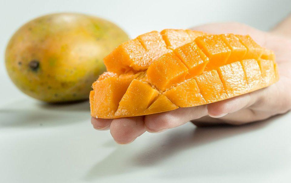 Seguridad alimentaria: retos y tendencias
