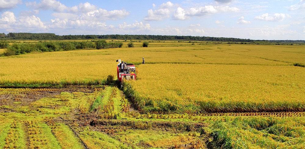 Jornada sobre registro regulatorio de fertilizantes y el mercado de China