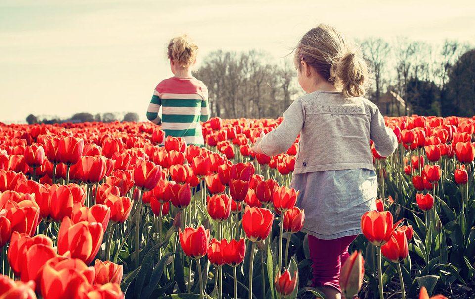 Sobre el futuro Reglamento UE de Fertilizantes