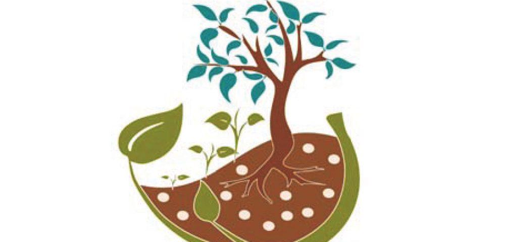 VI Jornadas del Grupo Fertilización de la SECH