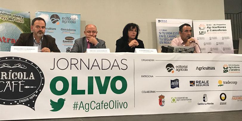 El olivar es un sector con potencial y futuro