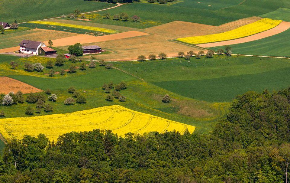 Bruselas marca el rumbo al fertilizante