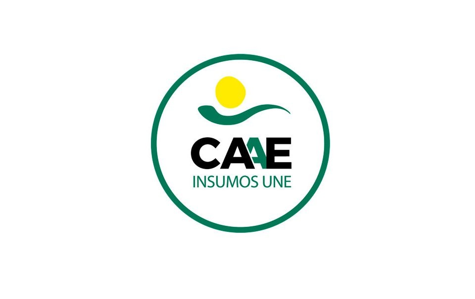 Logotipo CAAE para normativas de insumos UNE