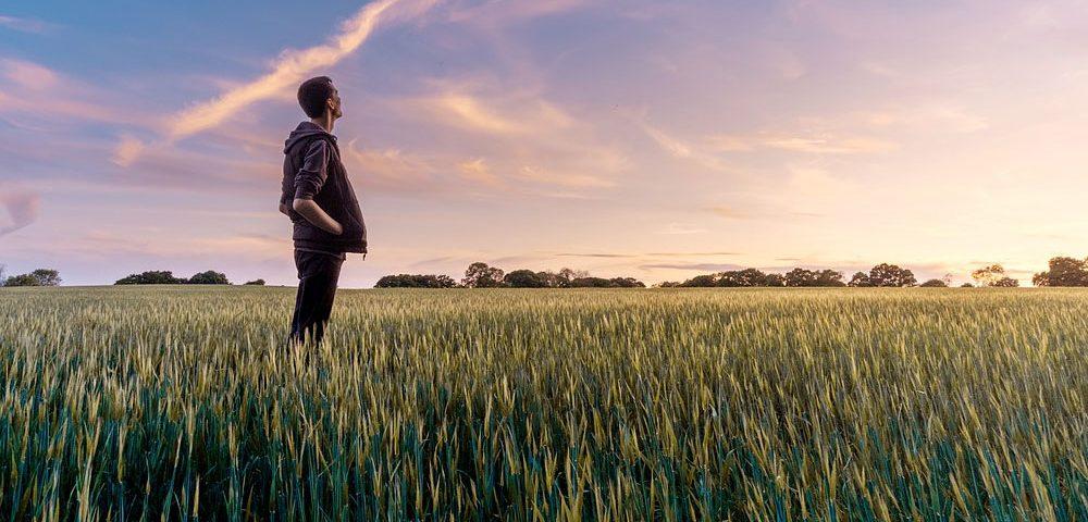 Taller sobre innovación en los sectores agrario y forestal